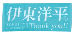 towel2017
